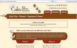 site-professionnel-thonon-web-conception